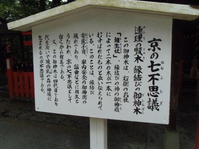 京の七不思議