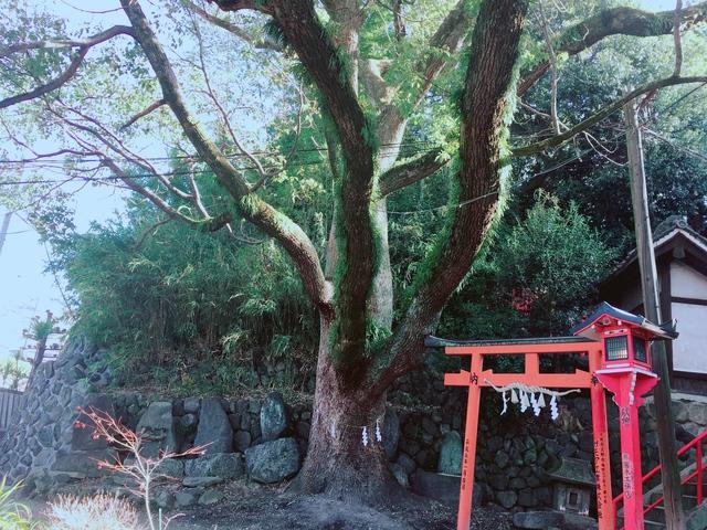 瓢箪山稲荷神社 縁結び神社