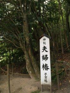 八重垣神社 縁結び神社