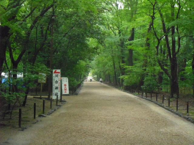 下鴨神社 参道